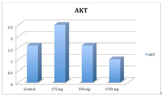 Chart: activation of AKT
