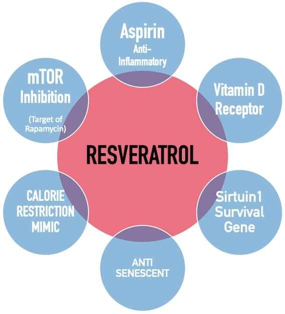 Chart: Resveratrol Actions