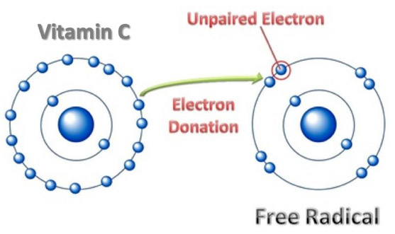 Vitamin C: electron donation