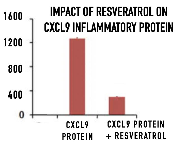 Chart: Impact of Resveratrol on CXCL9
